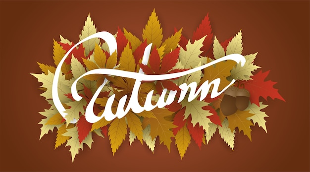 Hand writing white autumn text  boder, banner with leaves