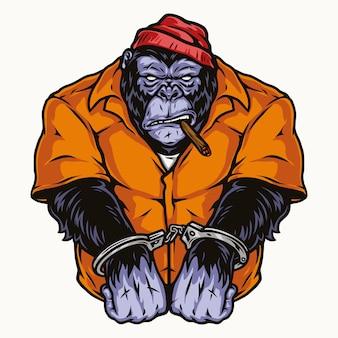 孤立したスタイルのオレンジ色の囚人服喫煙葉巻で手錠をかけられたゴリラ