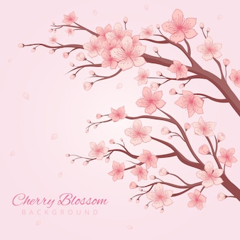 Handdrawn cherry blossom background