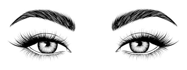 Handdrawn female eyes attractive woman eyes