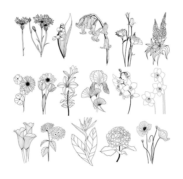 手描きの花セット