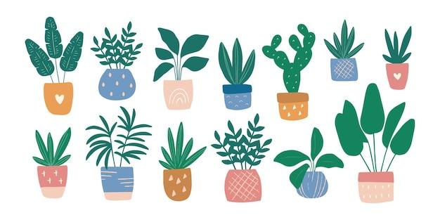 화려한 냄비 그림 세트에 handdrawn 집 식물