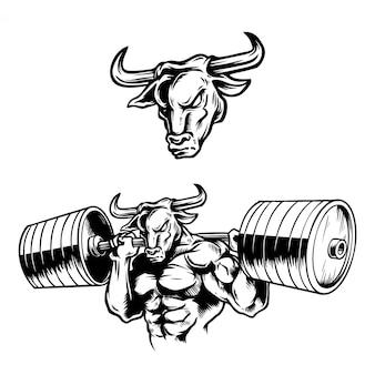Handdrawn illustration strong muscular bull