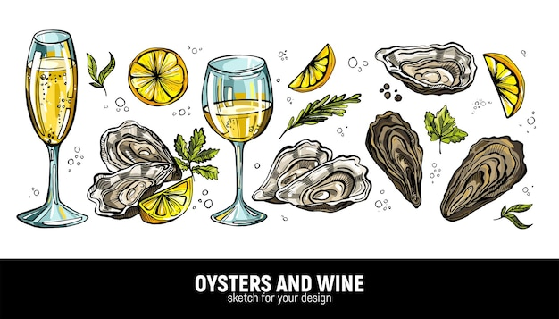 A handdrawn set of oysters and white wine champagne sea delicacies