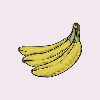Handdrawn vintage banana