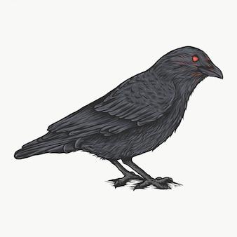 Handdrawn vintage crow vector illustration