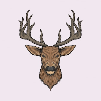 Handdrawn vintage deer head