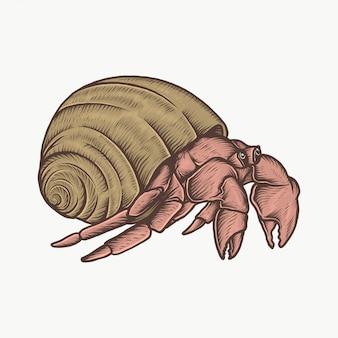 Handdrawn vintage hermit crab vector illustration