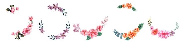 Insieme di arte floreale dell'acquerello disegnato a mano
