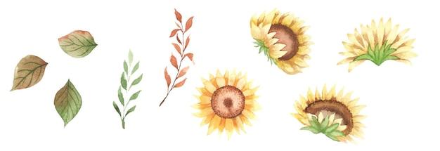 Disegno di arte floreale ad acquerello fatto a mano