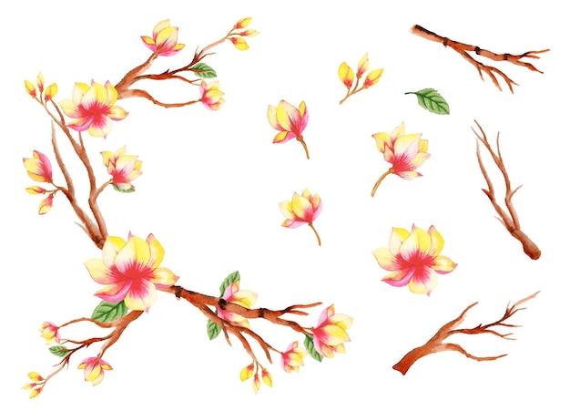 수제 수채화 꽃 예술 세트