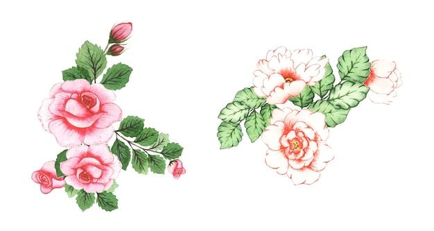 Arte floreale dell'acquerello fatto a mano