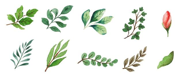 手作りの水彩花と葉のセット
