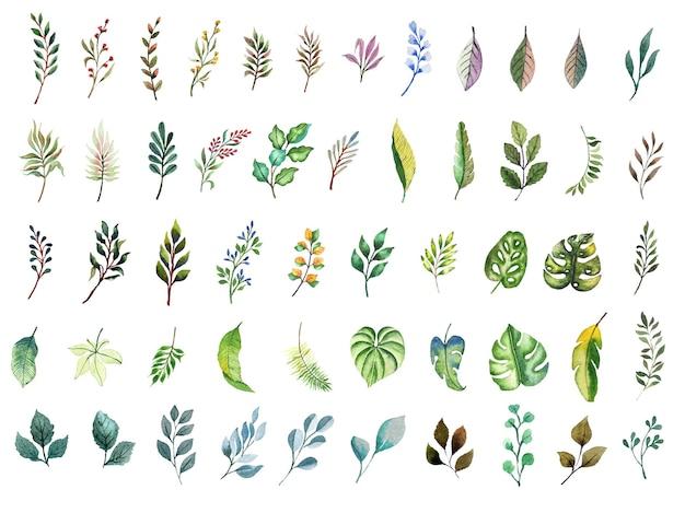 手作りの水彩熱帯の葉コレクション