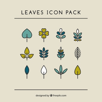 Handrawn leaves collection