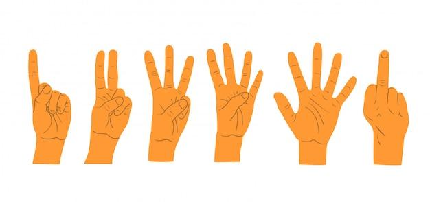 白い背景の上の手ジェスチャー。手の数。