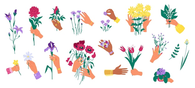 白いセットに分離された花を持っている手