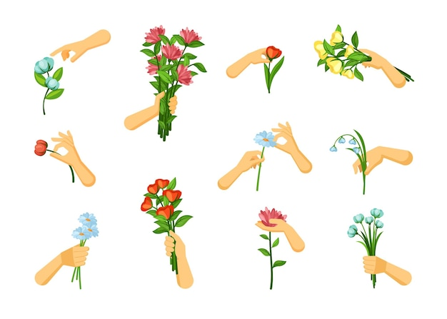 Hands pick and hold flowers set