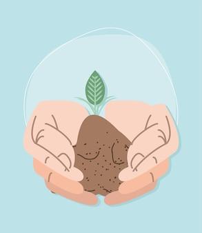 작은 식물을 심는 손