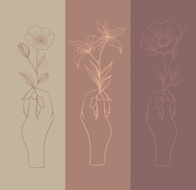 다양한 종류의 꽃, 라인 아트가있는 손