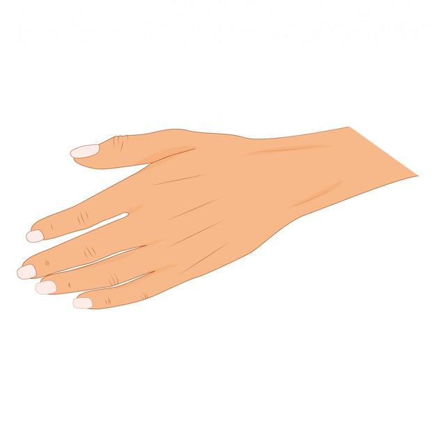 Handshake of business partners