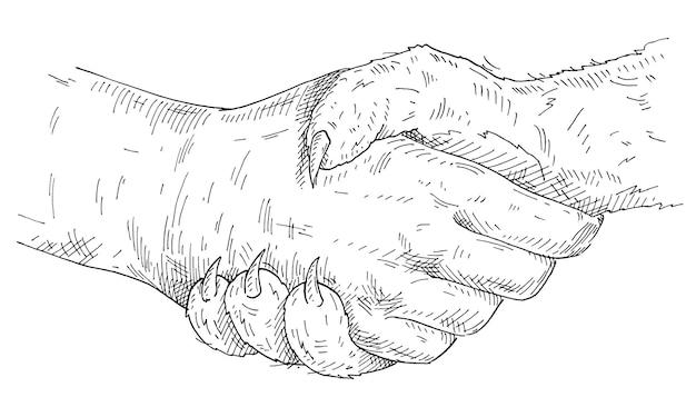 Handshake cat paw and human hand. vintage monochrome hatching illustration isolated on white background. hand drawn design element