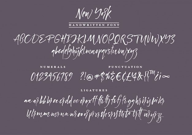 필기 스크립트 글꼴 브러시 글꼴. 대문자, 숫자, 문장 부호