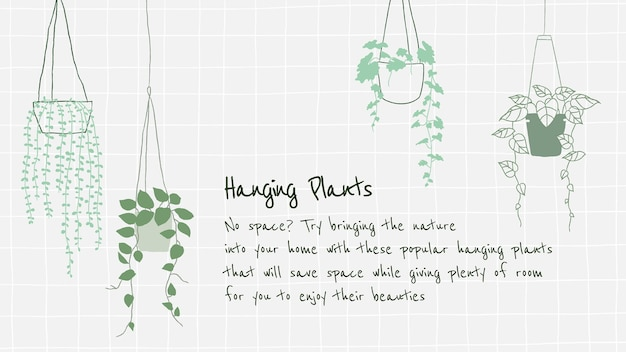 Hanging plant introduction to new plant parent vector template