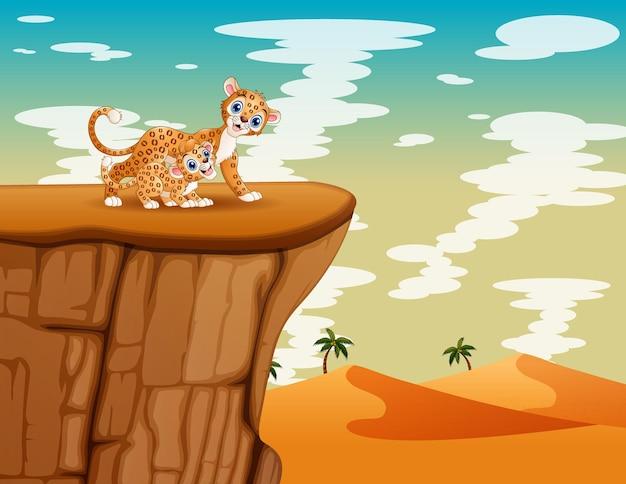 Счастливая мать леопарда с детенышем, играющим на скале