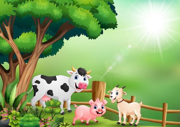 울타리 안에서 놀고 행복 동물 농장