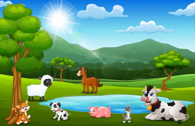 Happy animals farm playing next to small ponds with mountain scenery