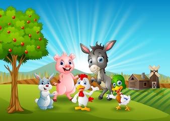 Happy animals on farm background
