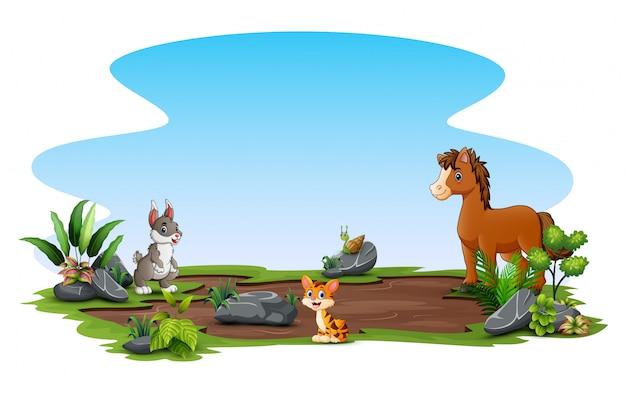 Happy animals playing at nature