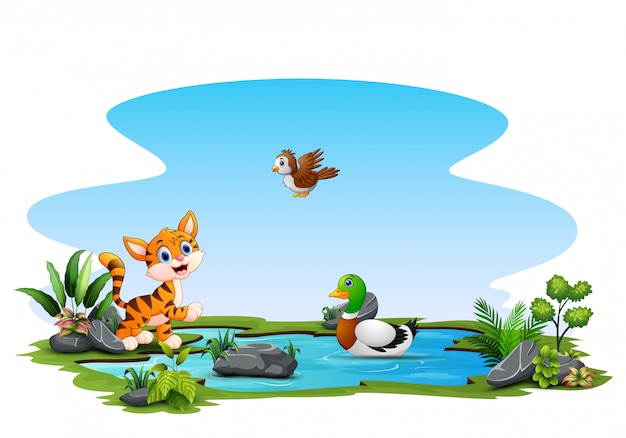 Happy animals playing on the small pond