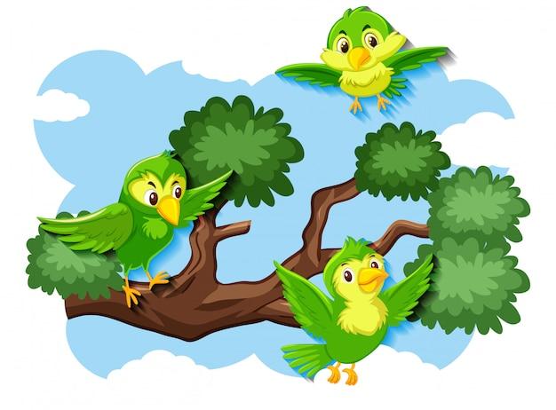 Happy bird flying in nature