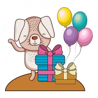 С днем рождения милый зверек
