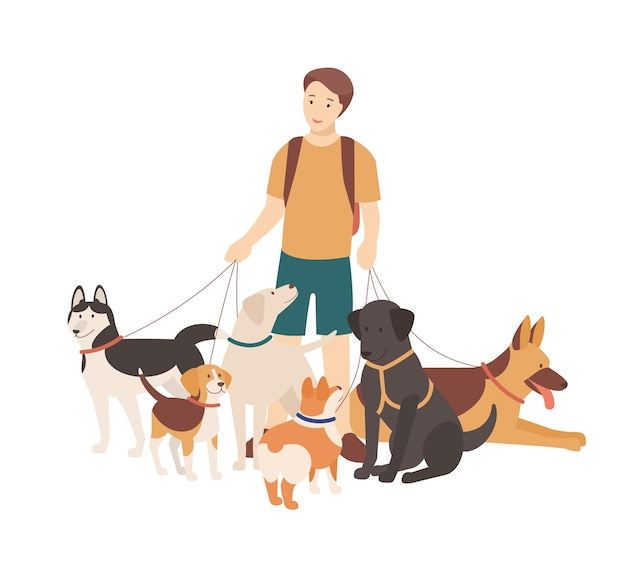 Happy boy walking his purebred dogs on leash. young smiling guy standing with domestic animals