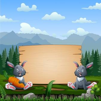 木製看板のそばに座って幸せなウサギ