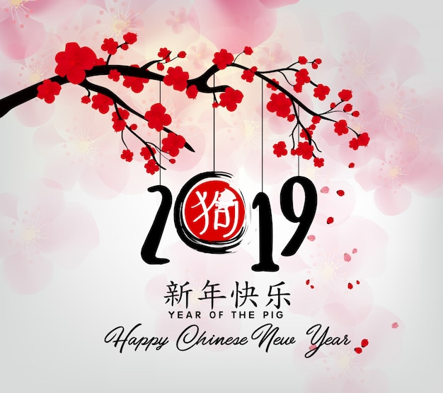 Happy chinese new year 2019, year of the pig. chinese characters mean happy new year