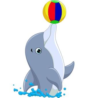 행복 한 돌고래 만화 공 놀이