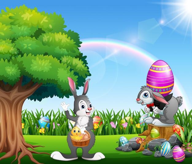 自然公園でハッピーイースターのウサギ