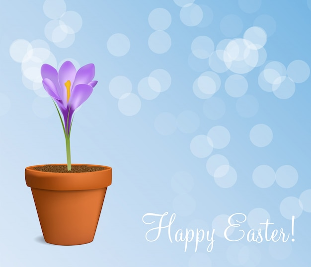 Happy easter with crocuses  illustration