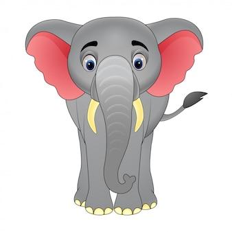 Мультфильм счастливый слон