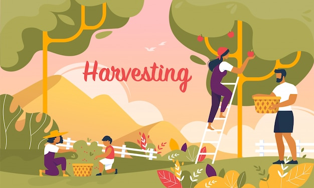 Happy family harvesting in garden banner, summer