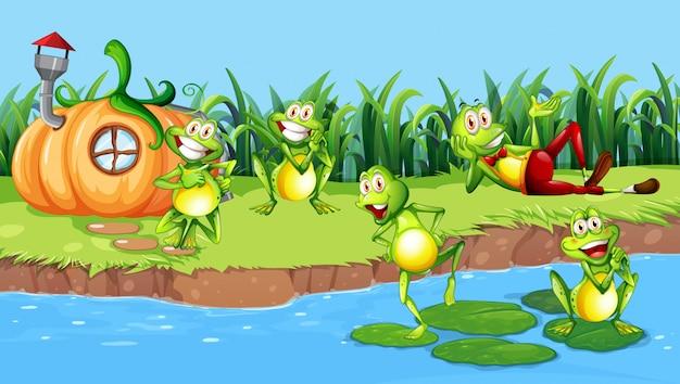 Счастливая лягушка рядом с рекой