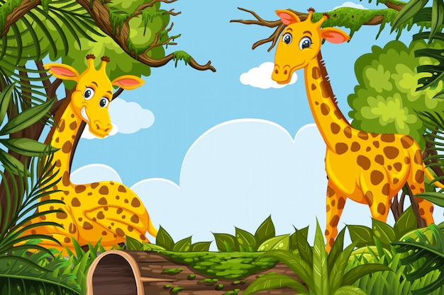 Happy giraffes in jungle scene
