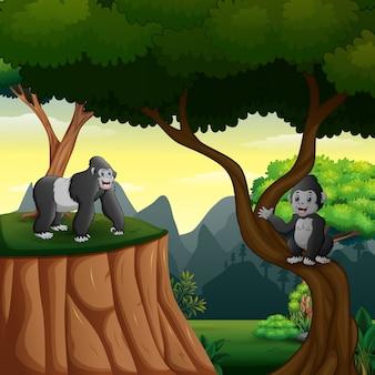 Счастливая мать гориллы с ребенком, играющим в лесу