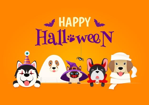 Счастливый костюм питомца хэллоуина.