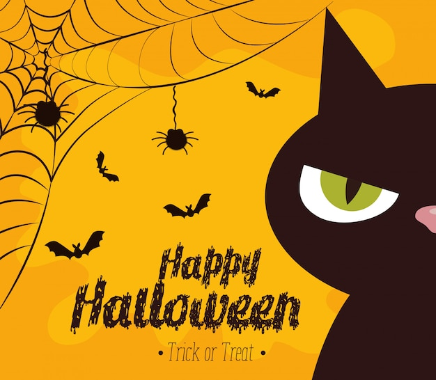 Happy halloween  with black cat