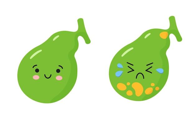 행복한 건강한 담낭과 돌이 있는 아픈 슬픈 담낭. 담낭염, 담석 질환의 문제를 설명하는 문자. 흰색 배경에 고립 된 벡터 일러스트 레이 션